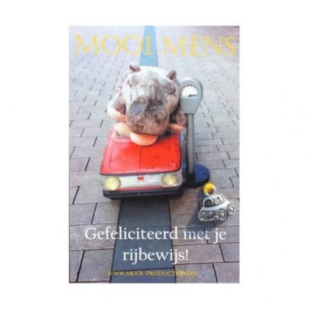 Mooi Mens Wenskaartje Gefeliciteerd met je rijbewijs!