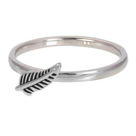 iXXXi Vulring Symbol Feather Zilver